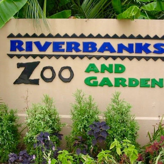 riverbanks-zoo-garden-columbia-sc